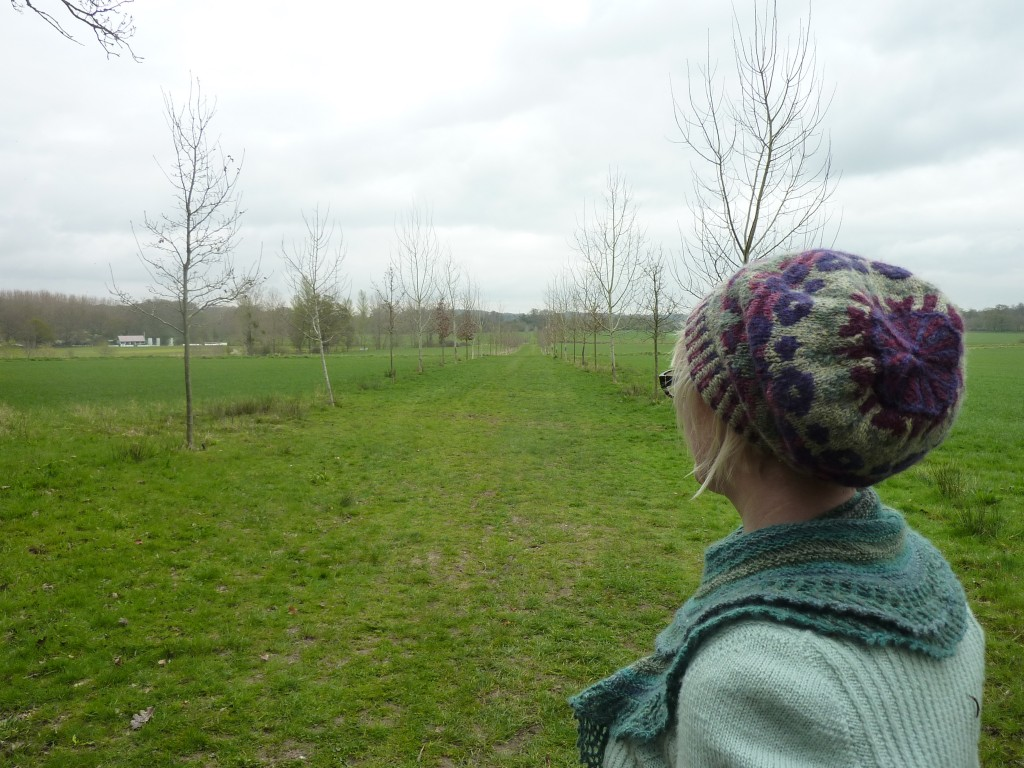 Felix at the tree-lined avenue to Hursley