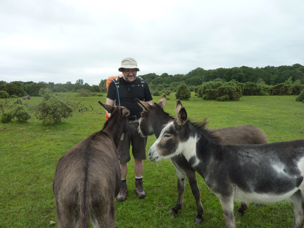 Me and the donkeys, Plaitford common